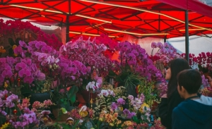 20210121-Flower-markets-crowd-control-measures-hinge-on-Covid-situation