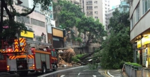 Two injured in tree collapse at Mid-Levels