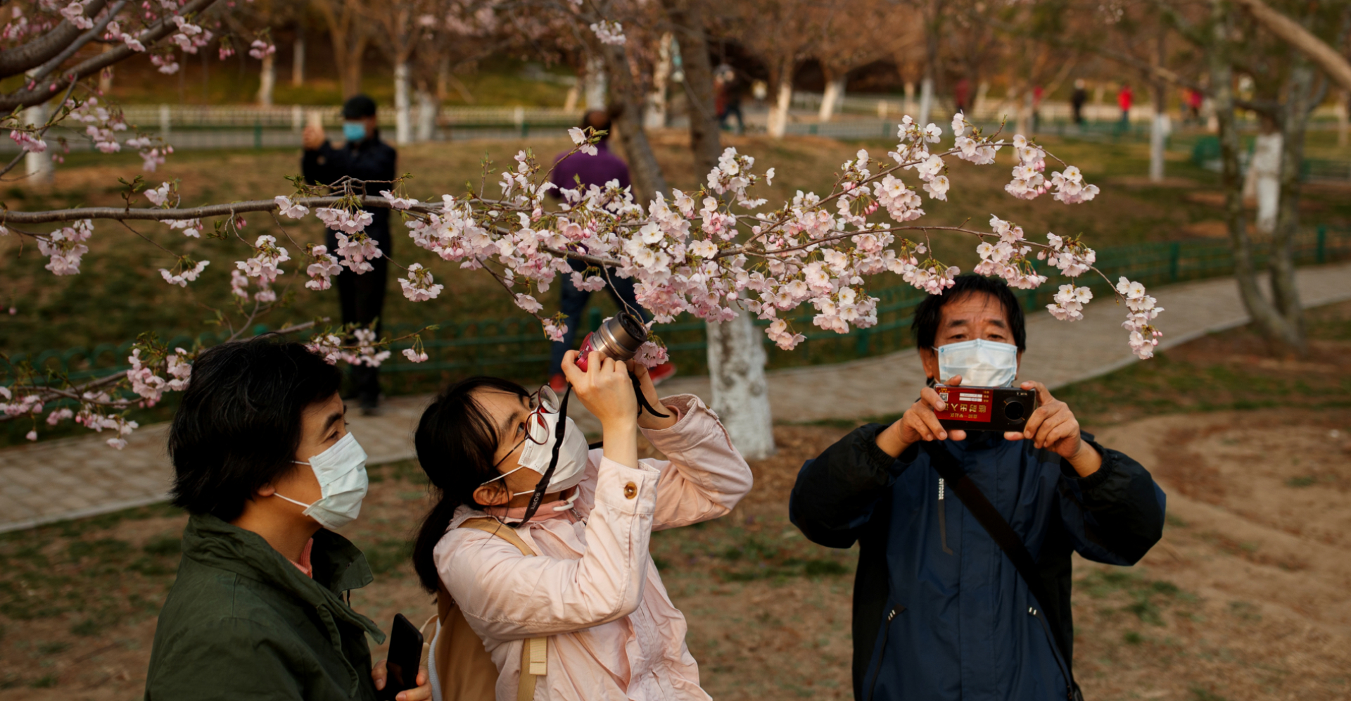 People wearing protective masks take pictures of cherry blossoms at a park in Beijing on Monday. Photo: Reuters